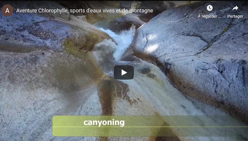 Vidéo Actiivtés Aventure Chlorophylle